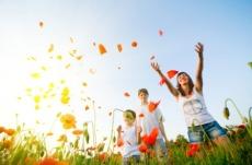 joie de vivre Access Consciousness formation